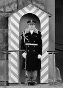 Adult Male Posters - Czech soldier on guard at Prague Castle Poster by Christine Till