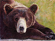 Black Pastels Posters - Da Bear Poster by Billie Colson