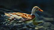Dabbling In Blue Waters Print by Bill Tiepelman