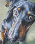 Dog Portrait Painting Framed Prints - Dachshund black and tan Framed Print by L A Shepard