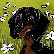 Black Dogs Framed Prints - Dachshund Framed Print by Leanne Wilkes