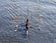 Rower Prints - Dad Vail Regatta  Print by Bill Cannon