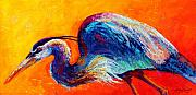 Birds Prints - Daddy Long Legs - Great Blue Heron Print by Marion Rose