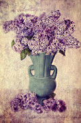 Flowers Photographs Framed Prints - Daddys Lilacs Series VI Framed Print by Kathy Jennings