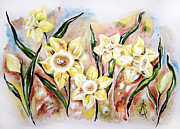 Amanda Drawings - Daffodil Drama by Amanda  Sanford