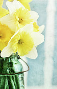 Canning Jar Framed Prints - Daffodils and Mason Jar Framed Print by Stephanie Frey