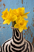 Blue Walls Prints - Daffodils in Wide Striped Vase Print by Garry Gay