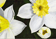 Daffodils Originals - Daffodils by Tricia Griffith