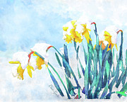Watercolor Simulation Prints - Daffodils With Bad Timing Print by Suni Roveto