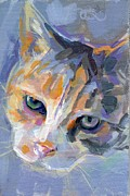 Kitty Cat Prints - Dagan Print by Kimberly Santini