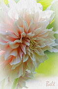 Floral Artist Posters - Dahlia Waves Poster by Christine Belt