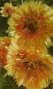 Flowers Pastels - Dahlias Golden by Mary McInnis