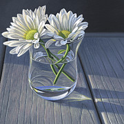 Steven Tetlow - Daisies In Drinking...