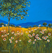 Daisies Paintings - Daisies in Provence by Chris Mc Morrow