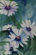 Daisies In The Blue Print by Gretchen Bjornson