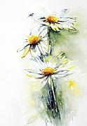 Floral Art - Daisy Chain by Stephie Butler