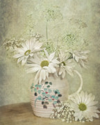 Old Pitcher Prints - Daisy Delight Print by Maria Dryfhout