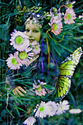 Elvin Framed Prints - Daisy Fae Framed Print by Cyoakha Grace