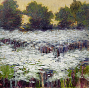 Vic Mastis Paintings - Daisy Field II by Vic  Mastis
