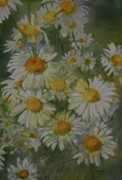 Helen Originals - Daisy Fresh by Helen Shideler
