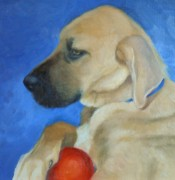 Great Dane Oil Paintings - Daisy by Mary Buergin