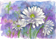 Daisy Drawings - Daisy Three by Cathie Richardson