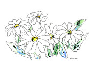 Daisy Drawings - Daisy Watercolor Drawing 2 by Gordon Punt