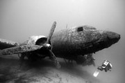 Wreck Prints - Dakota Print by Rico Besserdich