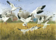 Waterfowl Paintings - Dakota Snows by Bud Bullivant