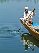 David Rich - Dal Lake Boatman