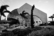 St Pete Photos - Dali Museum work number 6 by David Lee Thompson