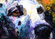 Custom Dog Portrait Posters - Dalmatian Dog Painting Poster by Svetlana Novikova