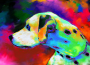 Svetlana Novikova Digital Art Posters - Dalmatian Dog Portrait Poster by Svetlana Novikova