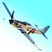 Dan Martin And P-51d Grim Reaper 2010 Reno Air Races Print by Gus McCrea