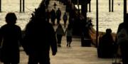 Linda Knorr Shafer - Dance of Life - 2