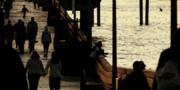 Linda Knorr Shafer - Dance of Life - 3