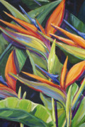 Bird Of Paradise Paintings - Dancing Birds by Patti Bruce - Printscapes