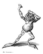 Linocut Art - Dancing Frog, Conceptual Artwork by Bill Sanderson