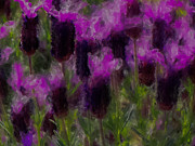 Lavenders Digital Art - Dancing Lavenders by Gina  Art Photography