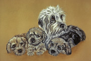 Puppies Pastels Framed Prints - Dandie Dinmont Terriers Framed Print by Patricia Ivy