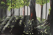 Sun Rays Painting Prints - Dappled Forest 1 Print by Jayne Kerr