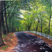 Dappled Light Lane Print by David Bottini