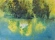 Vandy Massey - Dappled light on water