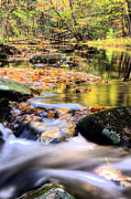 Dappled Photos - Dappled Two by JC Findley