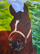 Racing Paintings - Darcys Delaney by Dani Altieri Marinucci