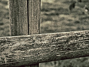 Wooden Fence Prints - Dare To Cross Print by Odd Jeppesen