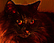 Kitten Prints Digital Art Posters - Dark Desires Poster by Larry Guterson