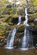 Scenic Drive Photo Posters - Dark Hollow Falls Shenandoah National Park Poster by Pierre Leclerc