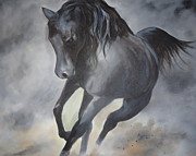 Horse Paintings - Dark Horse by Diana Prickett