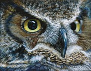 Yellow Beak Drawings - Dark Owl by Carla Kurt